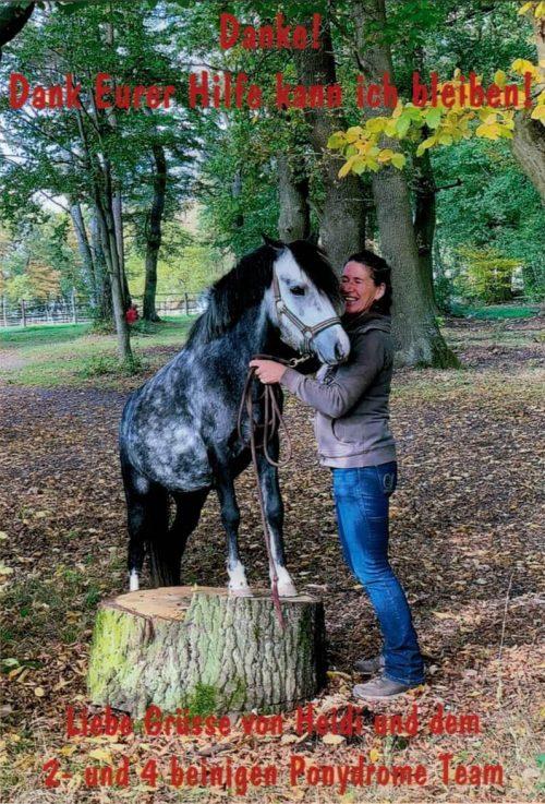 2019-10 Ponydrome Danke Vorderseite